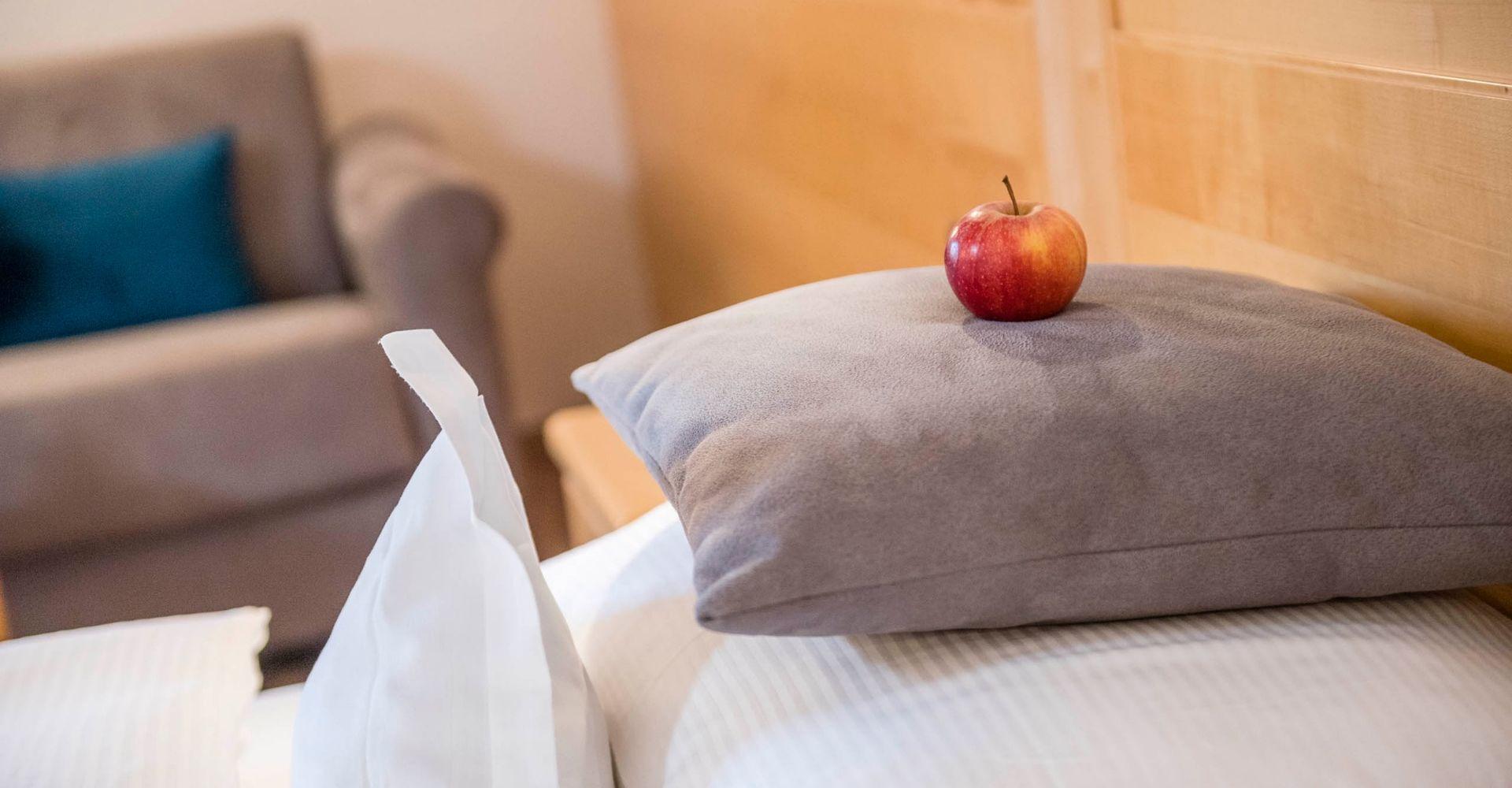 Pokój Alpen mini Suite